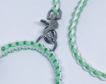 Paracord Dog Lead Mint and White