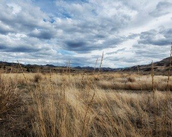 """Nature Photography-  """"A Bit of Central Oregon"""" - landscape photography, rural, grasslands, sky, Oregon wonder - unframed Print"""