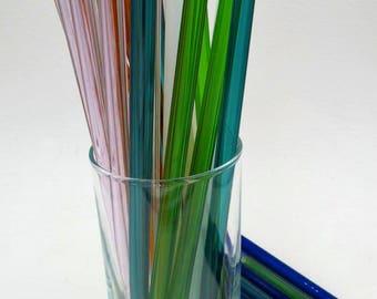 Eco Friendly Glass Straws One Straw With Carry Case