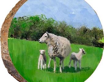 Sheep - DAR004