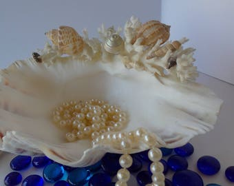 Superior Vintage Natural SHELL Dish, SEASHELL, Shell Appetizer Hors Du0027oeuvre Dish,  Shell Photo