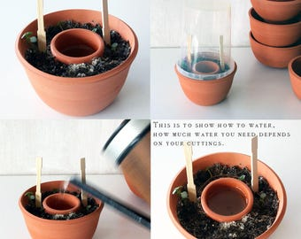 Planter for cuttings, handmade planter for propagating