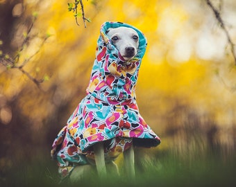 Italian greyhound coat made of high quality softshell - TWITTERS