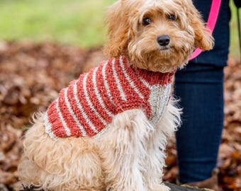 Knit Your Own Dog Jumper Kit - XXS
