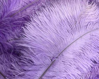 """Ostrich Feathers, 10 Pieces - 14-17"""" Lavender Ostrich Drab Body Feathers : 4340"""