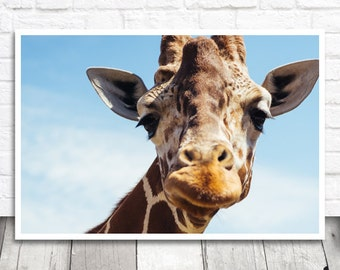 Giraffe Photo Print, Giraffe Portrait, Giraffe Print, Animal Print, Animal Photography, Giraffe Wall Art, Giraffe Decor, Digital Download