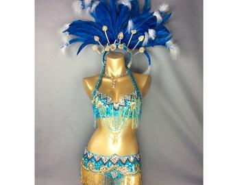 Samba Rio Carnival Costume Feather Headdress , feathers costume  accept any size