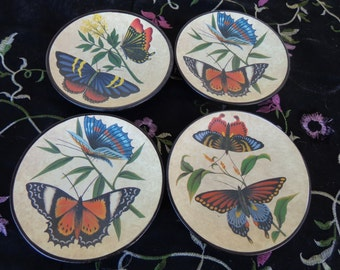 Four ceramic Butterfly Plates-  Beautiful Collection