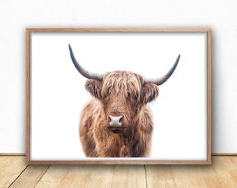 Highland Bull Print, Printable Wall Art, Digital Print, Instant Download, Cattle Photography, Farm Decor, Kitchen Poster, Printable Cow