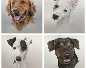 Watercolor/ink Custom Pet Portrait