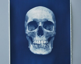 Human Skull Cyanotype blueprint