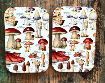 Mushroom tin LARGE, Notions tin, wallet