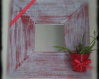 Small mirror door plant