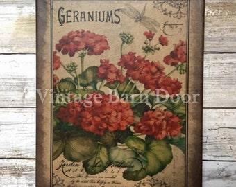 Geraniums 8x10 Canvas Art