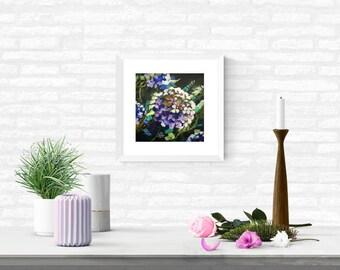"12 x 12"" Framed Original Art Acrylic Painting on Canvas – Hydrangea bloom"