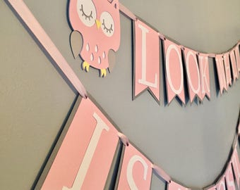 Owl baby shower, it's a girl, owl baby shower decorations, owl decor, baby girl, baby boy, baby shower, baby shower decorations, owl banner