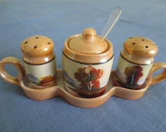 Vintage Hand-Painted Lusterware Condiment Set on Tray Japan