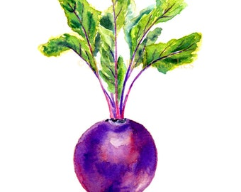 Beetroot Print, Purple Wall Art, Housewarming Gift, Kitchen Wall Art, Restaurant Decor, Vegetable Print, Food Print, Kitchen Wall Decor