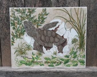 """Loggerhead Turtle """"I See Light"""" Limited Edition Print 1 of 50"""