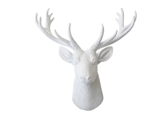 Mini Deer Head Wall Mount - All White - Home Decor Wall Mount SD0101