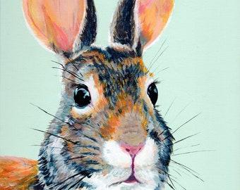 Fancy Cottontail Rabbit Wall Art