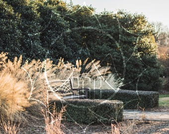 Willowing Bench