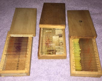 SALE Vintage Microscope Lab Slides Dovetailed Boxes Ca 60s Grasshopper Embryo Insects Science Chemistry Equipment Three Boxes Nearly Filled
