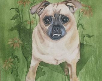 Custom Pet Portrait: Sweet Penny
