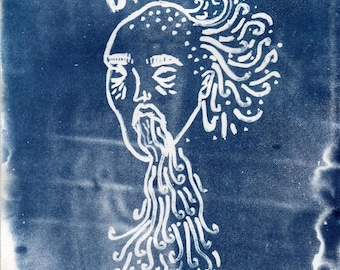 Cyanotype Illustration