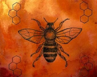 Honey Bee Watercolor