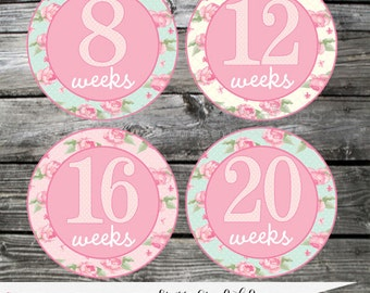 Shabby Chic Roses Pregnancy Stickers, Weekly Milestone Stickers Baby Bump Stickers Belly Stickers Baby Shower Maternity Photo Prop
