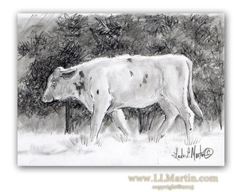 Steer By Pines Graphite on Paper llmartin