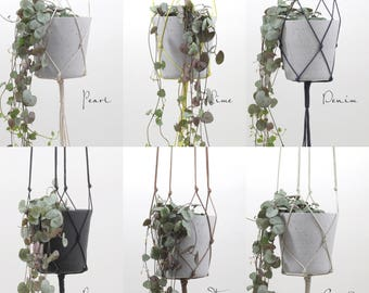 Plant hangers in different colors & sizes // modern macrame hanging flower pot planter waxed cotton kitchen living room vase basket flowers