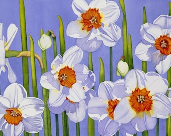 Watercolor painting...SPRINGTIME MAGIC...narcissus...giclee