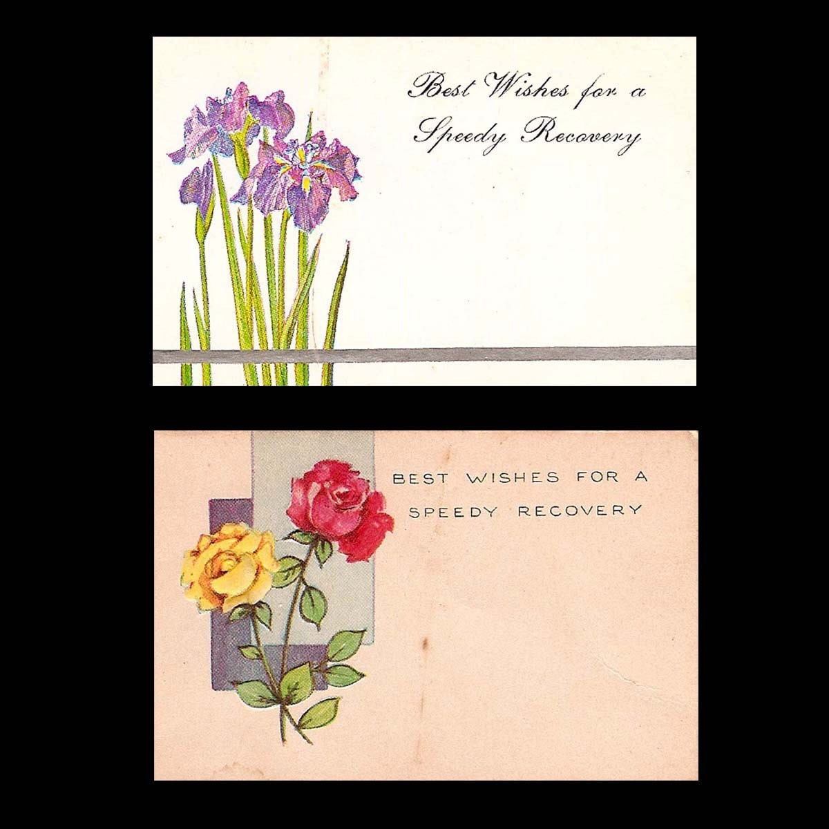 Vintage Floral Shop Gift Tags And Greetings Best Wishes From