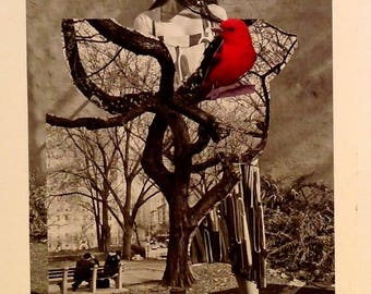 birdwatching, collage hand cut paper