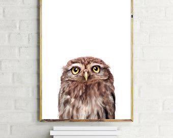 Owl Illustration, Owl Poster, Animal Posters, Cute owl, Nursery decor, Nursery Wall Art, Digital Download, Baby Owl, Funny Illustration