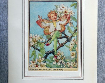 Pear Blossom Flower Fairy Vintage Print, c.1950 Cicely Mary Barker Book Plate Illustration