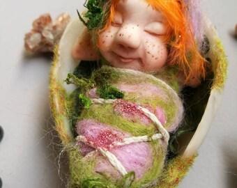 Baby elf in half egg