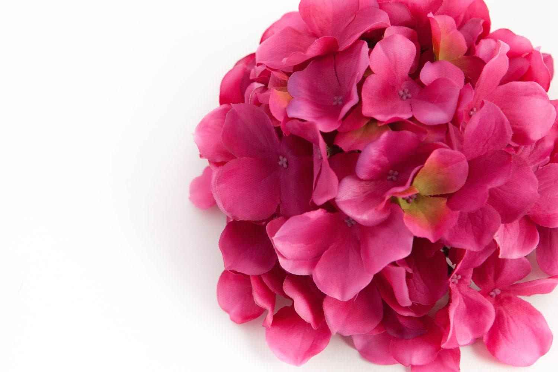 60 Large Hydrangea Petals In Deep Hot Pink Artificial Hydrangea