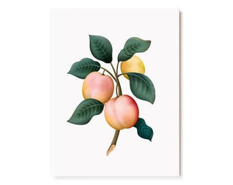 Botanical Scented Card - Plum