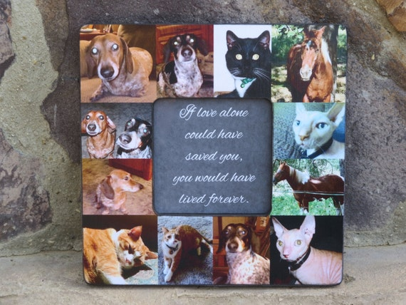 Pet Memorial Frame Pet Collage Picture Frame Personalized