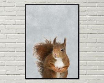 SQUIRREL print, cute animal nursery decor, printable squirrel poster, digital squirrel art, rodent wall decor, squirrel wall art cute animal