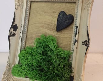 Artistic picture frame with stabilized moss
