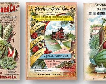 Steckler 1800s Vegetables Vintage Seed Garden Manual Set of 3 Art Prints