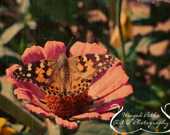 Garden Idyll - Fine Art Photo Print