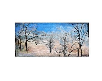 Landscape tree Print Decorative art Custom Home decor Abstract Wall art Contemporary Affordable  horizontal Winter Bare Trees