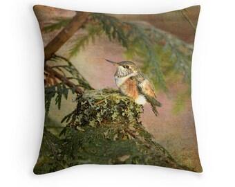 Hummingbird Decor, Wildlife Decor, Bird Cushion, Hummingbird Cushion, Hummingbird Pillow, Nature Cushion, Bird Throw Pillow, Bird Decor