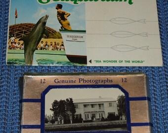 Vintage Florida Postcards, Vintage Miami Postcards, Vintage Miami Beach Postcards, Vintage Florida Photos, Vintage Florida Souvenirs