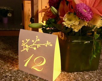 WEDDING TABLE Numbers • Shimmer GOLD or Vanilla • Spring Wedding • Wedding  Luminaries • Elegant Table Numbers • Party Table Decorations